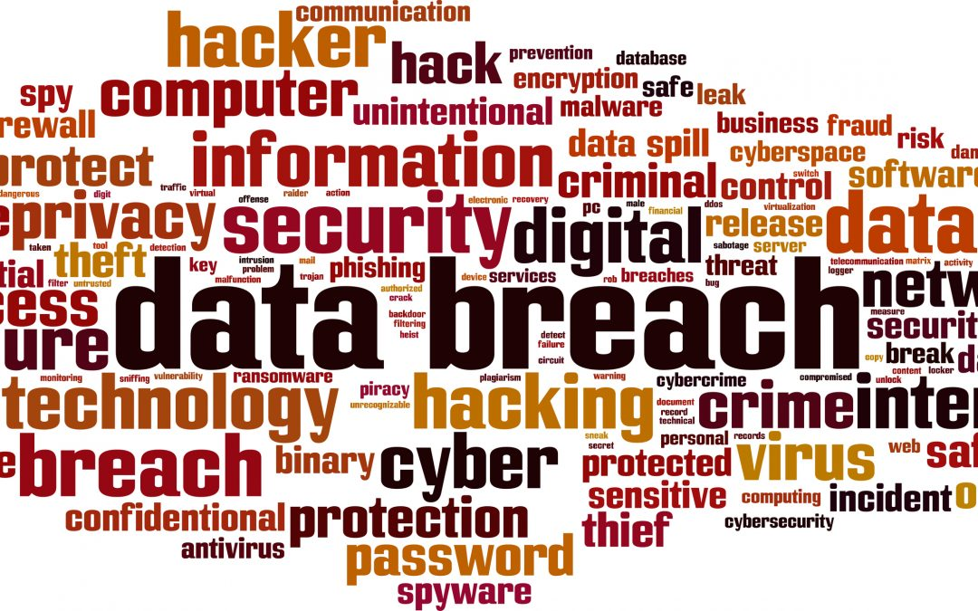 Immediate Steps to Take if Your Small Business Has Suffered a Data Breach